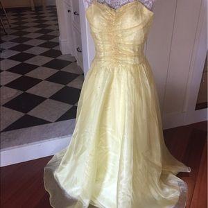 Beautiful fairy tale vintage dress!