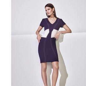 🎊HP💗Ann Taylor stitch bodice sheath color block