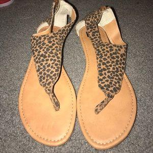 Cheetah print sandals.