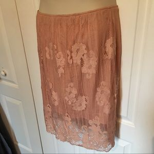 Society Plus Lined Lace Skirt
