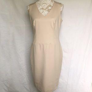 Katherine Barclay Dresses & Skirts - Katherine Barclay // V Neck Nude Shift Dress
