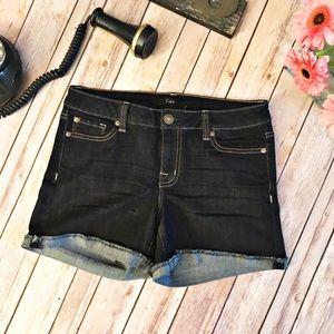 Dex Pants - Dex Dark Wash Denim Jean Shorts in EUC