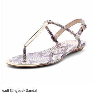 DV by Dolce Vita Shoes - DV Dolce Vita Aadi Snakeskin Sandal