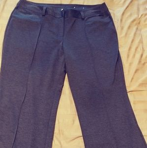 Woman's Cato 20w Dress pants