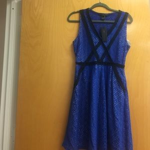 Marc JacobsRich Royal Blue Lace,6,NWT