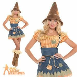 Costumes USA by Amscan Other - Sultry Scarecrow Costume - S/M (Like New)