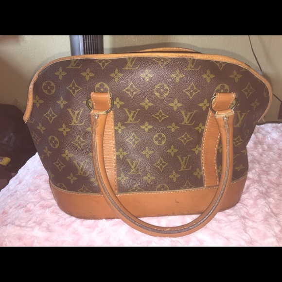e6754b18427 Louis Vuitton Handbags - French Company Louis Vuitton Dog Carrier