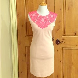 Ted Baker Pink Dress w/ Lace- Size Small