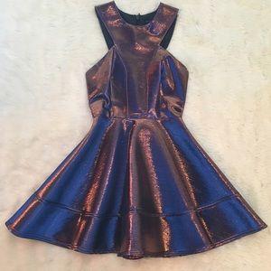 Topshop Dresses & Skirts - Topshop Metallic Two Toned Skater Dress Mini