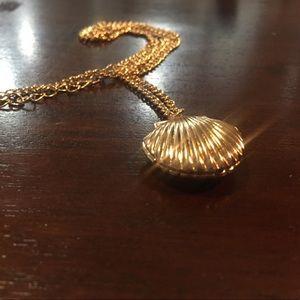 Simple Seashell locket necklace