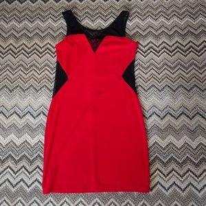 Rhapsody Dresses & Skirts - NWT Rhapsody Zipper Dress