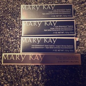 Mary Kay Other - Lipstick and liner bundle