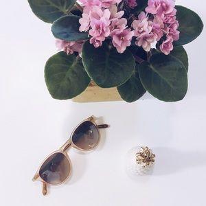 Garrett Leight Accessories - GLCO Hampton Sunglasses