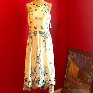 Cynthia Steffe High-Low Dress
