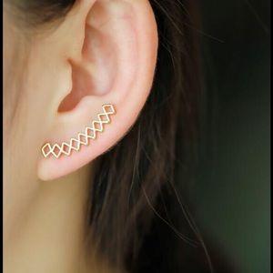 2 Chic Jewelry - Beautiful Earrings ✨