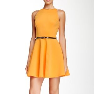 Ted Baker Dresses & Skirts - Ted Baker size 8 preeny orange scuba sheath dress
