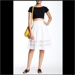 Amanda & Chelsea Dresses & Skirts - NWT Amanda & Chelsea organza pleated circle skirt
