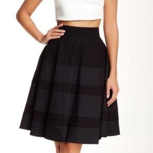 Amanda & Chelsea Dresses & Skirts - Amanda & Chelsea Novelty Circle Skirt. NWT!