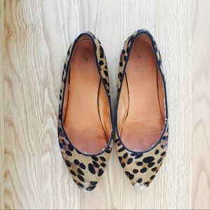 Madewell Sidewalk skimmer Flats in leopard