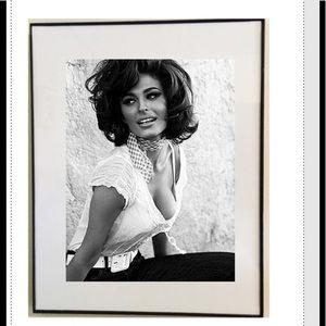 Other - Sophia Loren frame