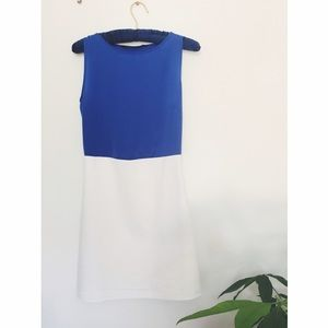 Zara Dresses & Skirts - Zara Blue and White Colorblock Classic Mini Dress