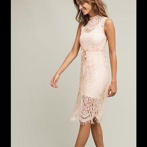 Anthropologie Dresses & Skirts - NWT LILI'S CLOSET Large Engracia Pink Lace Dress
