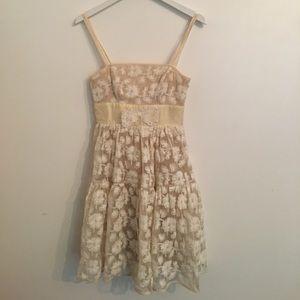 Beautiful Nude Lace Detail Dress