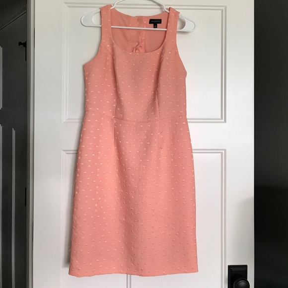 The Limited Dresses & Skirts - Peach knee length Limited sheath dress