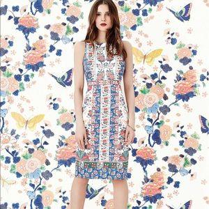 Oasis Dresses & Skirts - Oasis Camilla Pencil Dress