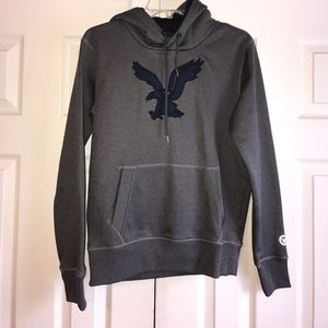 American Eagle Outfitters Other - Men's AE Hoodie- new without tags.