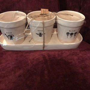 Rae Dunn Accessories - Set of 3 flower pots and tray Rae Dunn
