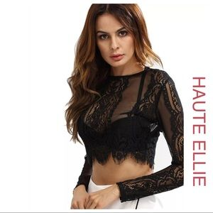 Haute Ellie Tops - 🆕 Sheer Madness Feathered Lace Top