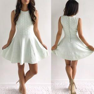 Ted Baker Dresses & Skirts - Ted Baker Frinca Textured Skater Dress