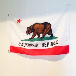 Urban Outfitters Other - California Republic flag display