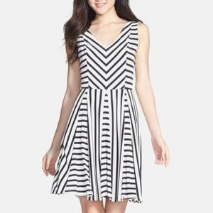 Stripe Jersey Fit and Flare Dress