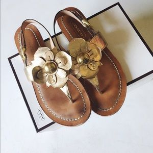 {coach} • sari gold leather flower sandals