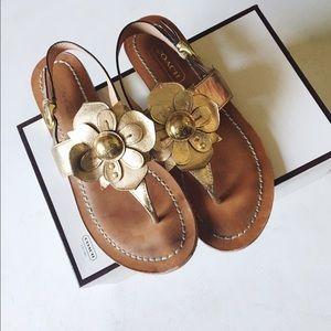 • coach • sari gold leather flower sandals