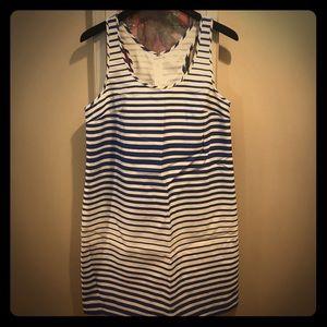 Blue and White Banana Republic Striped Dress