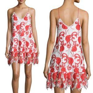 Alexis Dresses & Skirts - Alexis Clement Lace Mini Dress