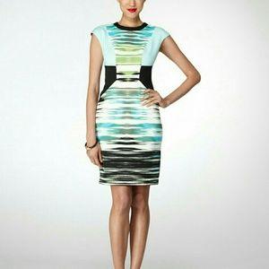 Maggy London Mirror Image Tiger Stripe Scuba Dress
