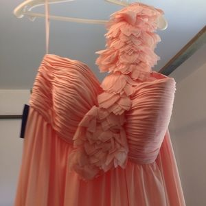 NWT Pink floor length gown