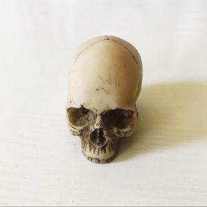 Mini human skull paper weight