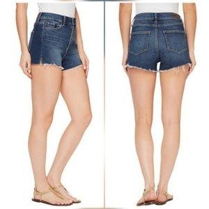 Paige Jeans Pants - Paige Margot High Rise Shorts Titus Destructed