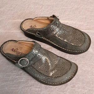 Alegria Shoes - Slip on by Alegria. Worn but still good cond.