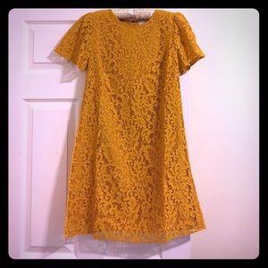 Loft Flutter Sleeve Lace Shift Dress, Yellow