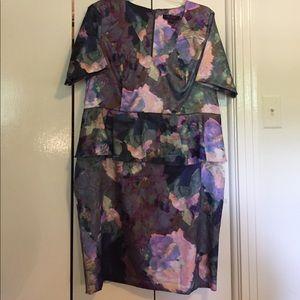 Anna Scholz Dresses - Host Pick! Anna Scholtz sz 20 floral peplum dress