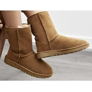 UGG Shoes - Women's UGG Classic II Short Boots (Chestnut)