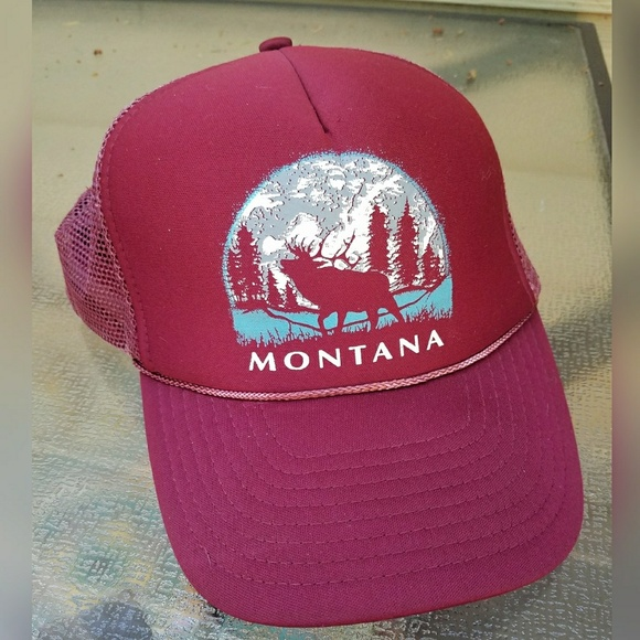 Awesome, VINTAGE, Montana, trucker hat!!