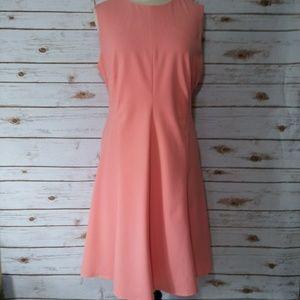 Calvin Klein Collection Dresses & Skirts - NWOT  CALVIN KLEIN Dress Size 12