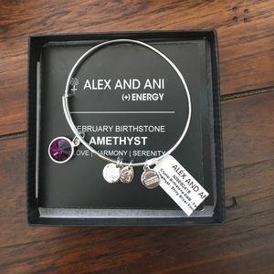 Alex & Ani Jewelry - Alex & Ani February Birthstone Charm Bracelet